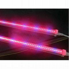 T5 Integrative LED Grow Light Tube