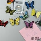 Butterfly paper fridgemagnet for home decoration with high quality and low price