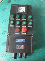 BXK8050-系列防爆防腐控制箱