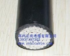 供應10KV-JIKLYJ/Q架空電纜