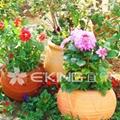 供應園林花盆