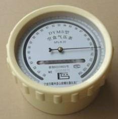 指針壓力表DYM3空盒氣壓表