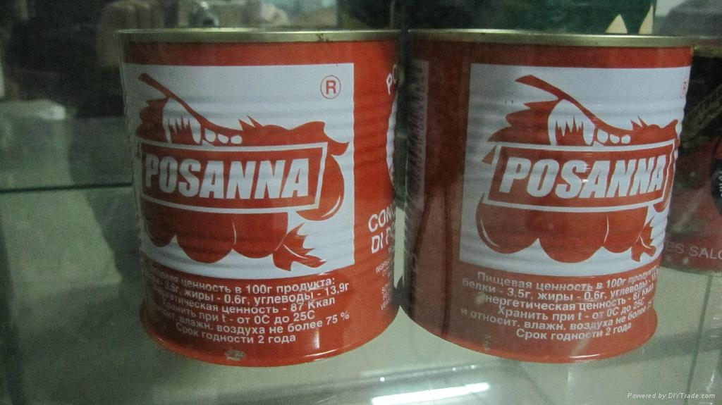 tin 70g tomato paste 28-30 by strong manufacturer export Africa,Europe 4
