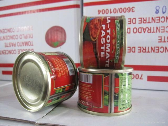 tin 70g tomato paste 28-30 by strong manufacturer export Africa,Europe 5