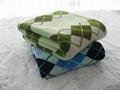 Coral Fleece Blanket 3