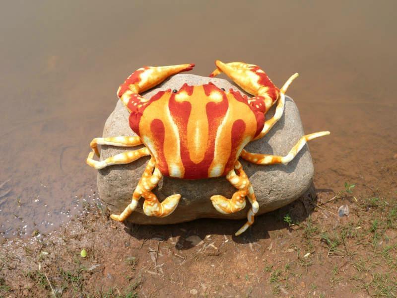 螃蟹头饰手工制作