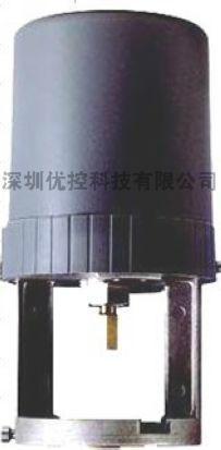 S6062-10D閥門驅動器 1