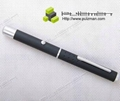 P1 Green Laser Pointer 2