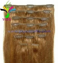 Remy human hair Clip-in hair extensions