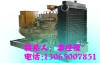 养殖场专用50kw沼气发电机