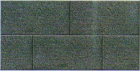 古玉蘭條紋步道石 1