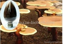 glossy Ganoderma polysaccharides
