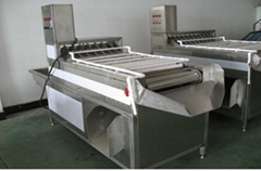 Hen egg peeling machine ( six rows) MT-200