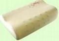 Magnetic Memory Foam Pillow