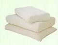 Magnetic Latex Pillow 1