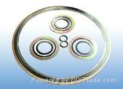 浙江溫州生產帶316L鋼內外環纏繞大規格密封墊片 2