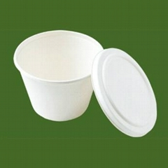 biodegrable disposable bowls with lid