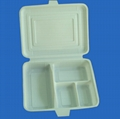 biodegradable disposable meal box