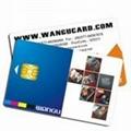 smart card 1