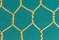 六角网 3