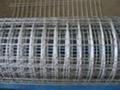 玉米电焊网