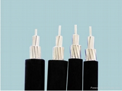 架空絕緣電纜