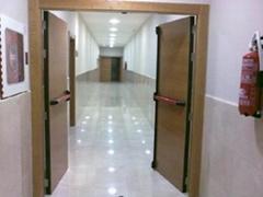 Fire-resistant Doors