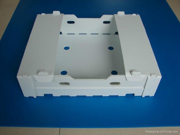 高檔塑料葡萄箱 3