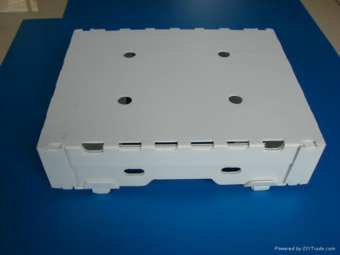 高檔塑料葡萄箱 4