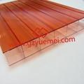 Double color polycarbonate hollow sheet-