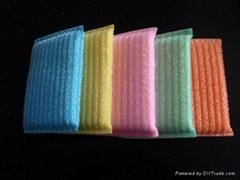 block scrub sponge
