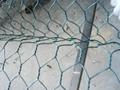 sne边坡防护网