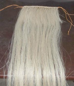 horse hair wefts 3