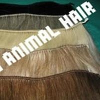 horse hair wefts 4