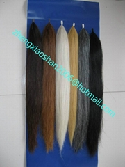 Trophy horse tail extensions