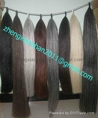 Horse hair show tail extension