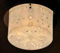 Acrylic Ceiling Lamp