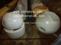 Ceramic Ball Valve 1