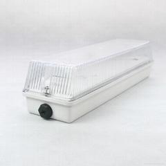 8W LED emergency lamps