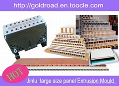 WPC large size panel extrusion mould,China PVC