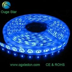 5050藍光60燈一米LED軟燈條