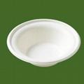 biodegradable disposable bowl