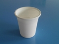 biodegradable disposable cup  2