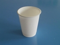 biodegradable disposable cup  4