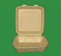 biodegradable disposable meal box 4