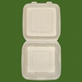 biodegradable disposable meal box 5