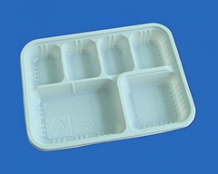 biodegradable disposable tray