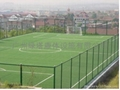 棒球場人造草坪(LT-WS50) 2
