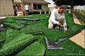 棒球場人造草坪(LT-WS50) 3