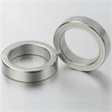 NdFeB Magnet (ring)